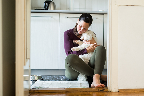 The disturbing link between domestic violence and the family pet