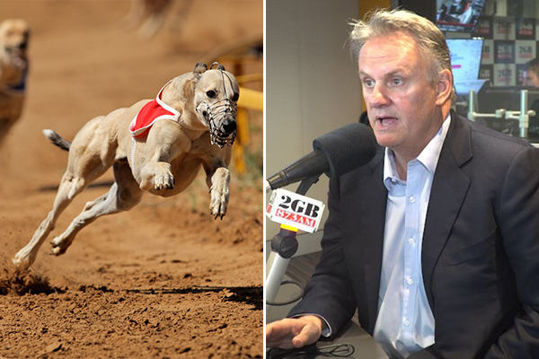 Article image for Mark Latham slams inquiry into greyhound integrity commission