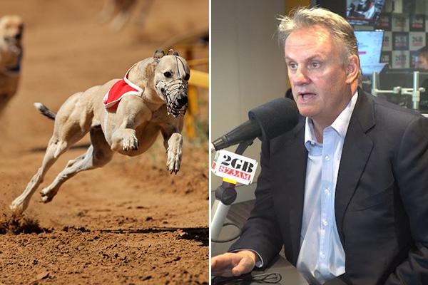 Mark Latham slams inquiry into greyhound integrity commission