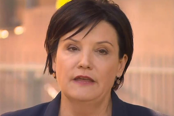 'They coward punched me': Labor leader hits out at unions' 'attack' on her