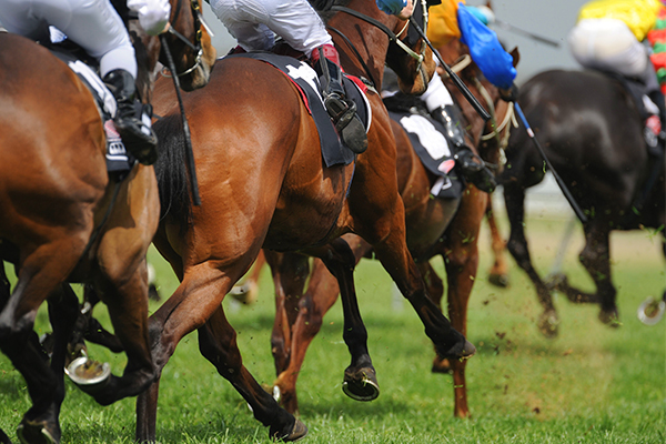 Article image for Peter V'landys confident rain won't dampen Golden Slipper day