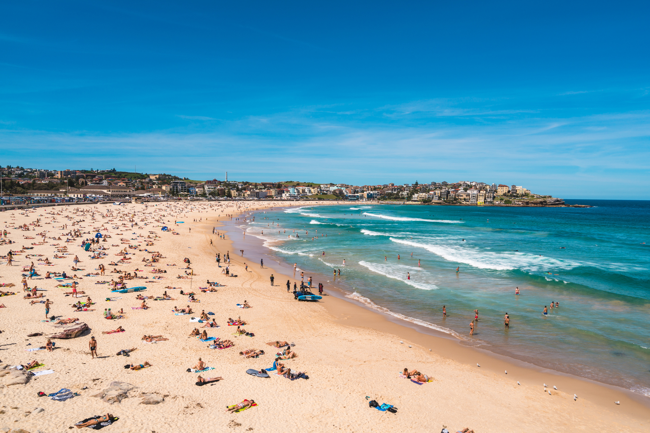 The plan for a COVID-safe summer for Sydney's beachgoers