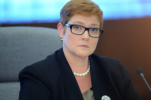 Article image for Minister warns foreign interference risk at all-time high
