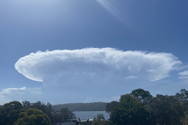 Article image for Wild weather on its way to Sydney as smoke haze hovers over the north