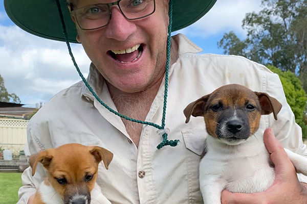 Meet Jim Wilson's furry new family members