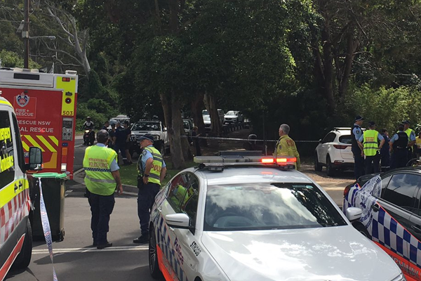 Article image for 'Horrendous scene' for paramedics at Stanwell Park pedestrian tragedy