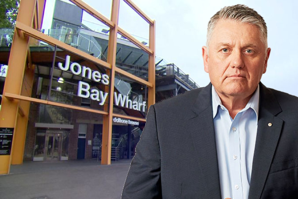 Ray Hadley blasts wedding reception 'dolts' throwing CBD into chaos
