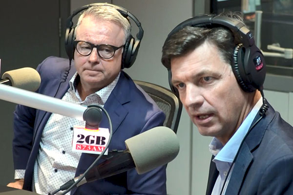 Article image for Energy Minister attacks NSW's 'diabolical' roadmap in fiery interview