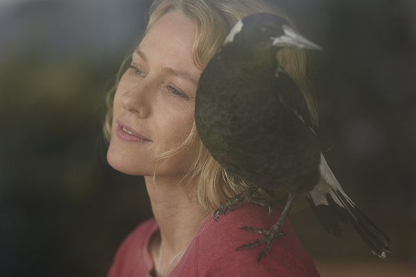 Why Naomi Watts 'broke all the rules' on Penguin Bloom set