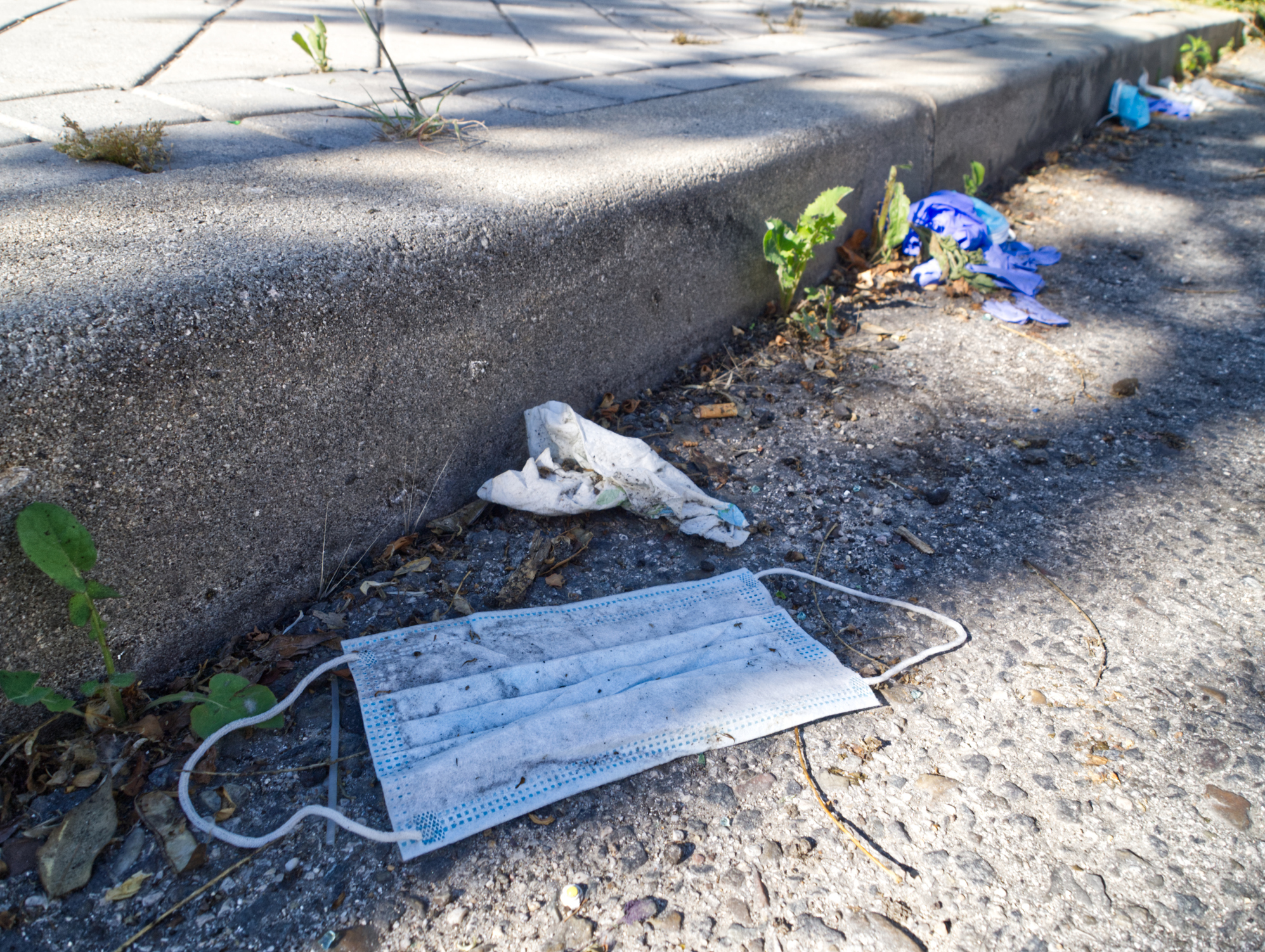 Article image for 'It's really disgusting': Sydney council cracks down on PPE debris