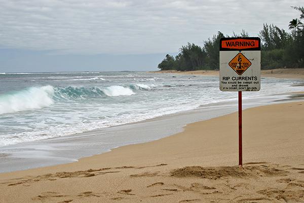 Article image for Lifeguard explains the secret to surviving a rip