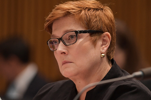 Minister for Women says Andrew Laming has 'owned' his actions