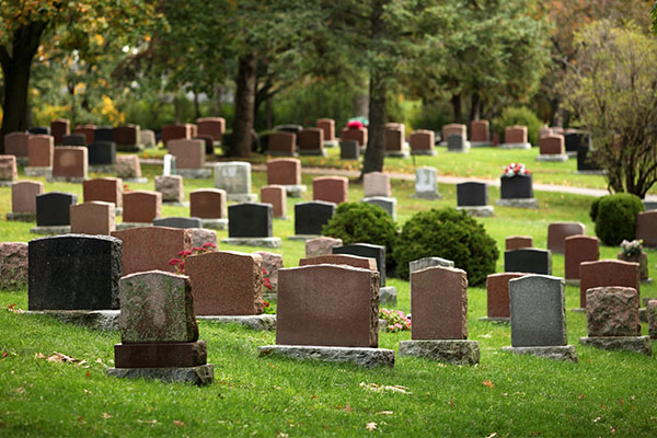 Article image for The 'outrageous' fee a NSW cemetery is trying to charge a grieving family