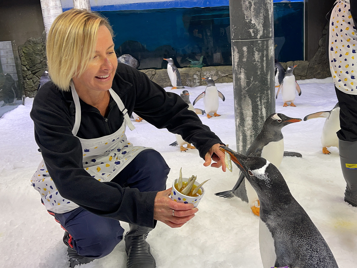 Deborah Knight fishes for friends at adorable penguin tea party