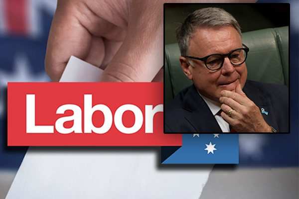 Article image for Joel Fitzgibbon says 'Labor brand is in trouble' after byelection result