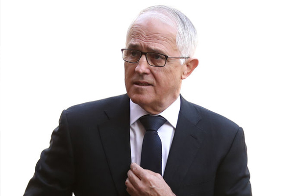 Article image for Independent Upper Hunter candidate admits Turnbull's support 'a risk'