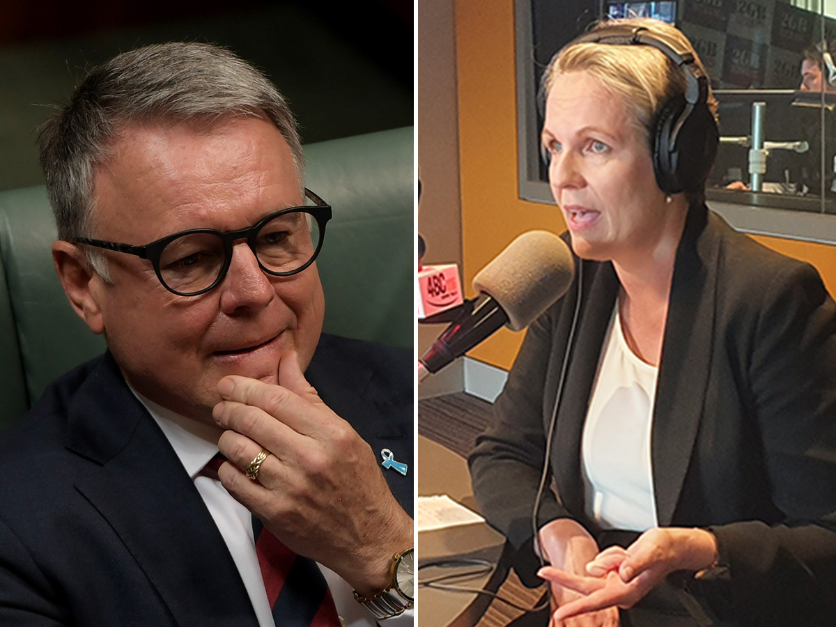 Article image for Labor feud: Tanya Plibersek laughs off Joel Fitzgibbon's slap