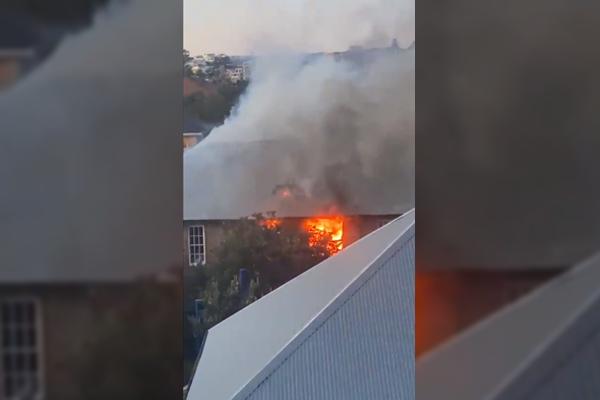 Bondi Beach Public School ablaze, 50 firefighters on scene