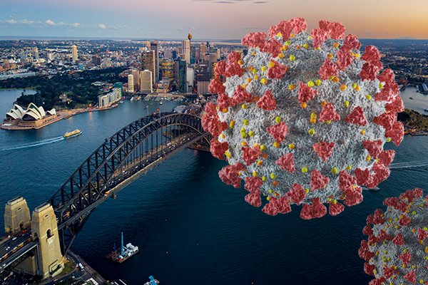 Article image for Harvard Professor explains why Sydney could end its lockdown now