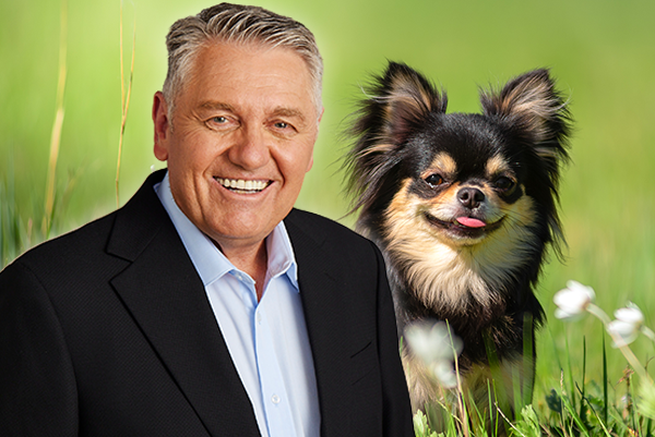 Article image for Ray Hadley executes dastardly plot against a chihuahua