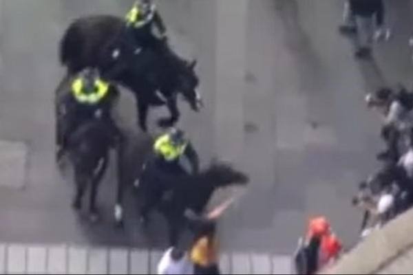 Ray Hadley refutes horse-punching denialists with aerial footage