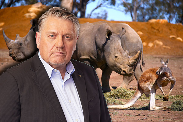 Article image for Elderly passengers on Dubbo zoo tour led astray by trip organisers