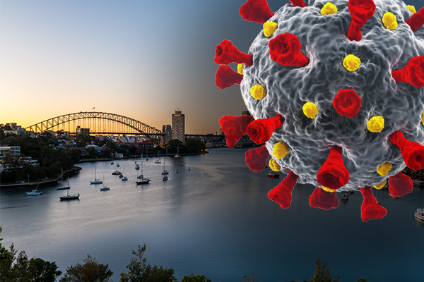 Article image for 'Zero cases is ridiculous': Dr Ross Walker's solution to Sydney's COVID outbreak