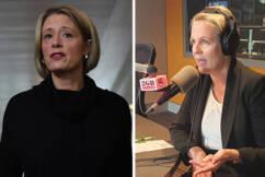 Tanya Plibersekdeclares local representation essential amid Kristina Keneally debacle