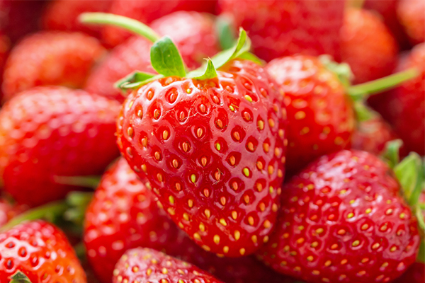 Article image for Help our farmers by buying 'a couple of kilos' of strawberries