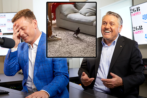Article image for 'I've got a problem with Ray': Ben Fordham questions Ray Hadley