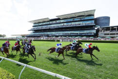 Racing NSW boss claims The Everest 'doing the Melbourne Cup a favour'