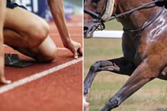 Manpower vs horsepower: Which species will claim Royal Randwick glory?