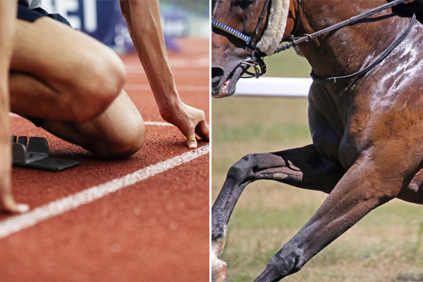Article image for Manpower vs horsepower: Which species will claim Royal Randwick glory?