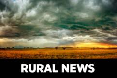 National Rural News October 15